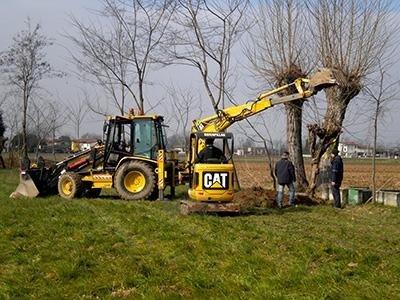 Gnoato giardinaggio Cittadella (PD)