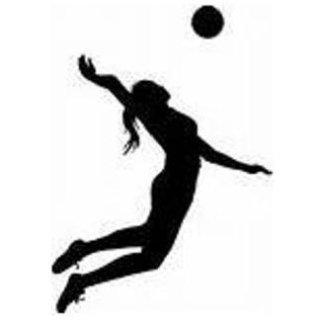Sport Volley