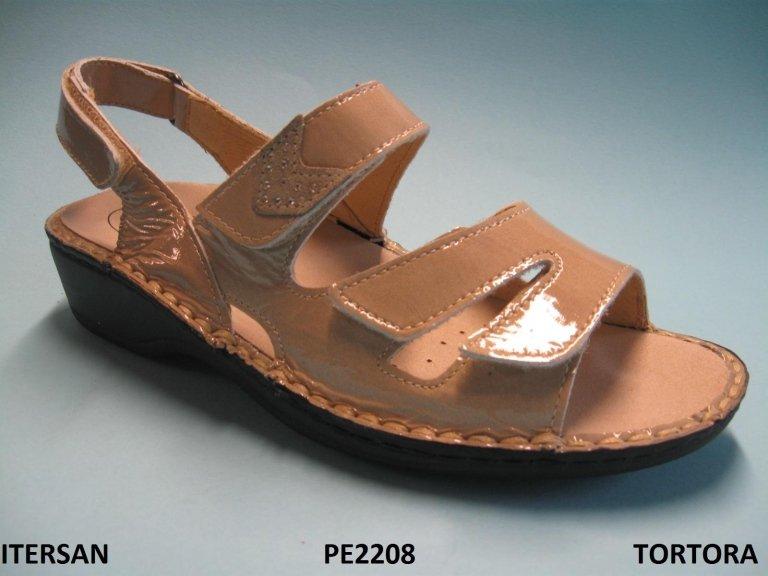 ITERSAN - PE2208 - TORTORA