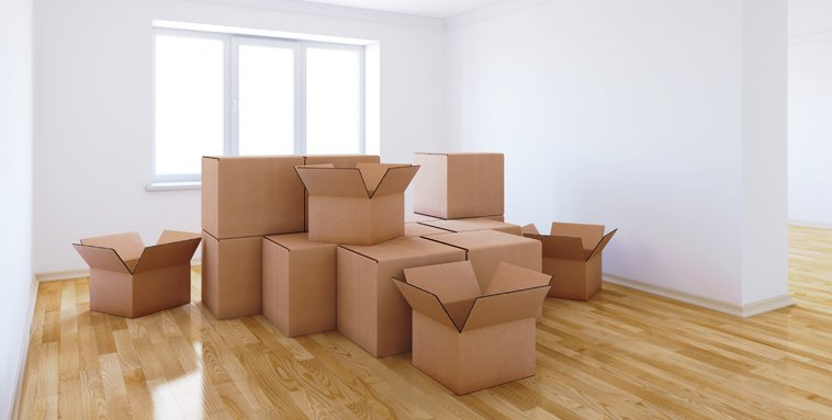 Professional removals services
