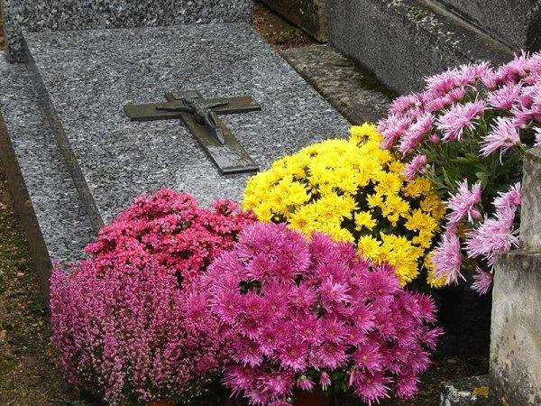 gestione pratiche cimiteriali