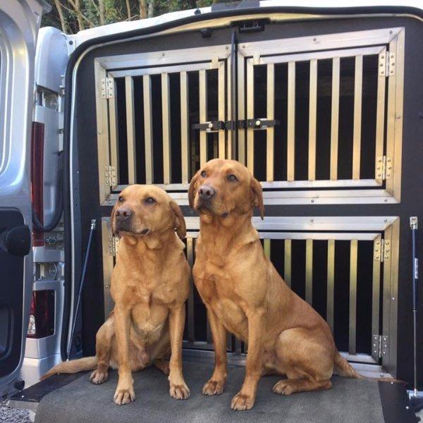 Dog Vehicles