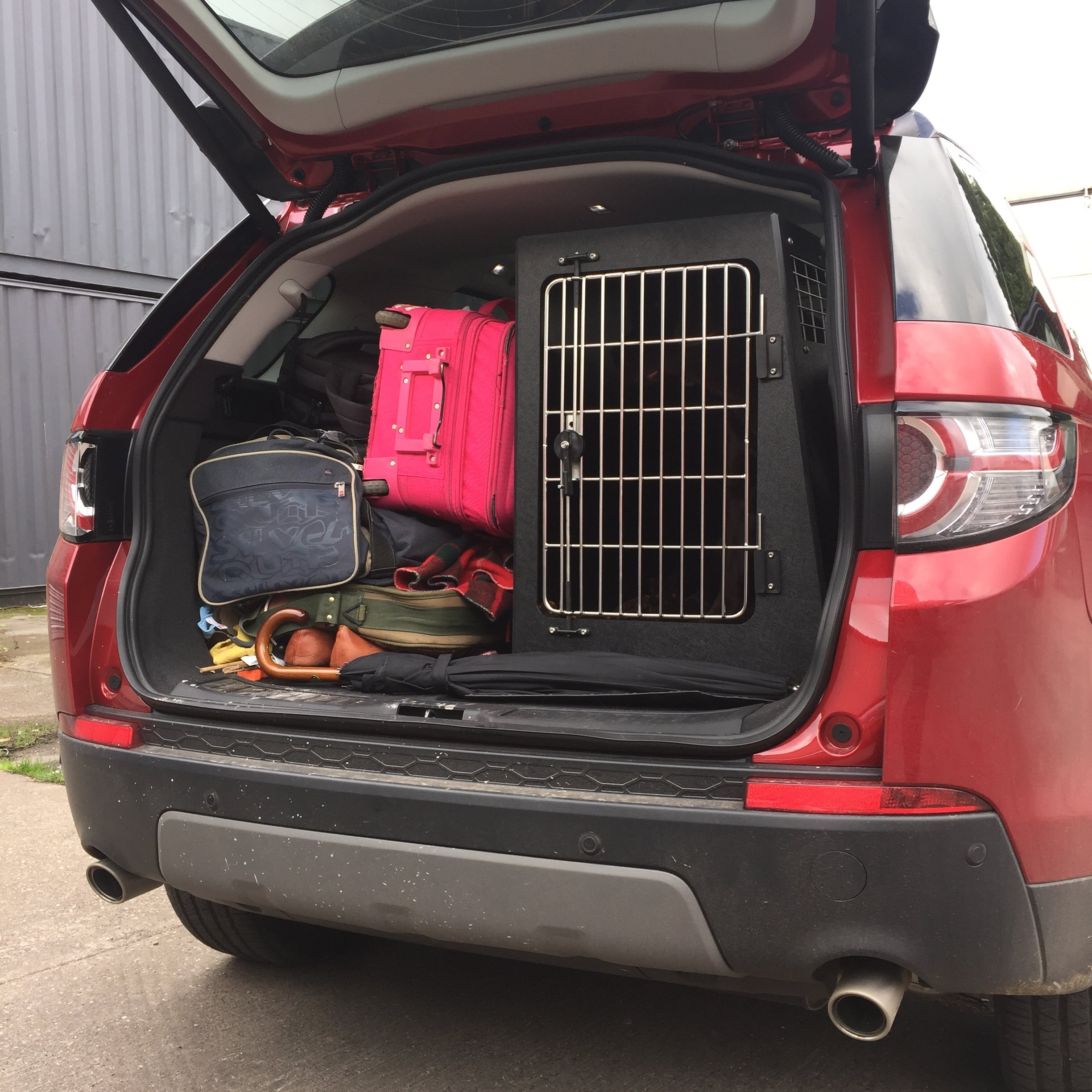 Dog Transit Crate
