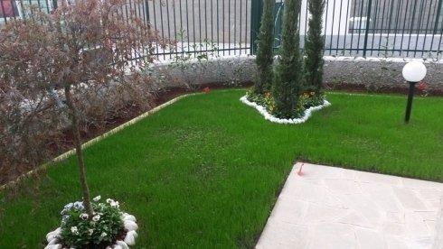 Manutenzione manti erbosi per giardino