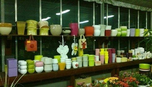 Vasi e coprivasi in ceramica per piante