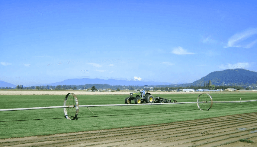 Watering turf at Lefeber Turf Farm in Skagit Valley, Mount Vernon, WA.