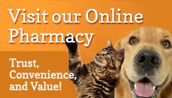 online animal pharmacy - Greensboro, NC
