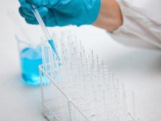 Analisi papilloma virus umano
