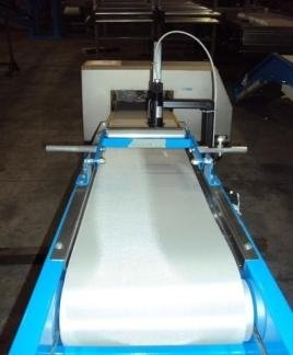 conveyor belt with metal detector