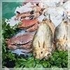 ingrosso di pesce