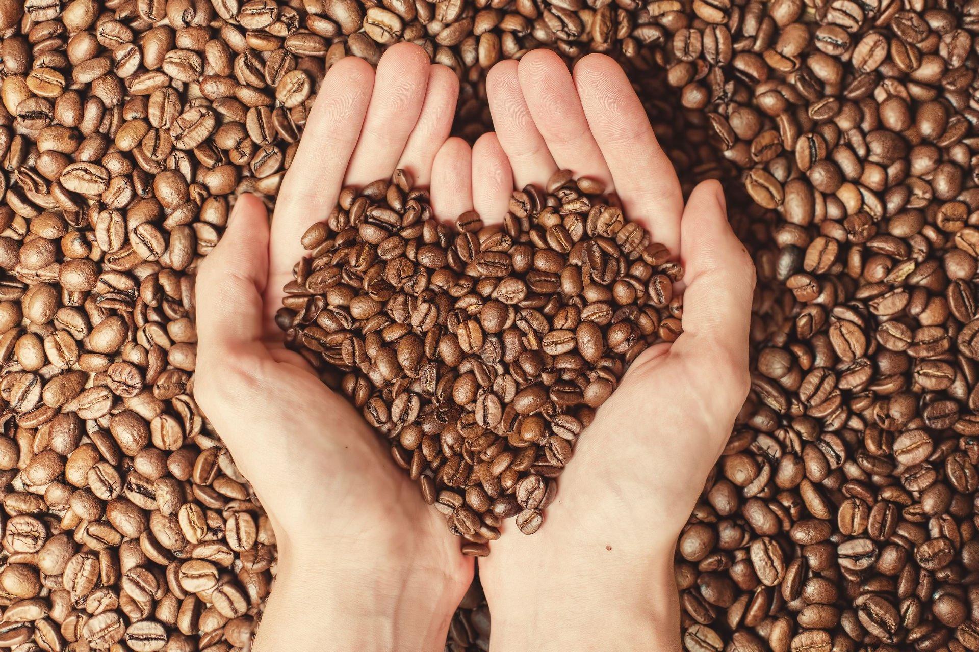 due mani con dei chicchi di caffè'