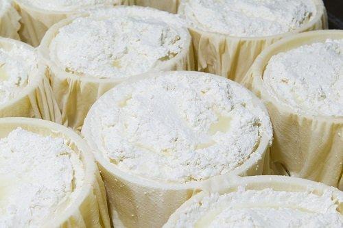 formaggi in contenitori