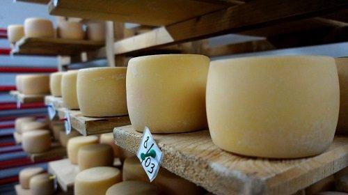 formaggi in espositori di legno