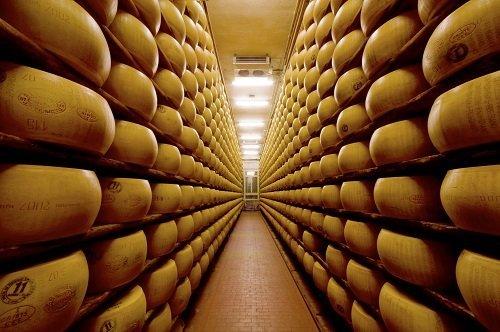 Prospettiva di bancali con forme di formaggio a stagionare