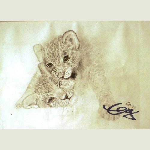Bild Zeichnung Katzen Bleistift Goßner