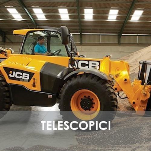 sollevatori-telescopici