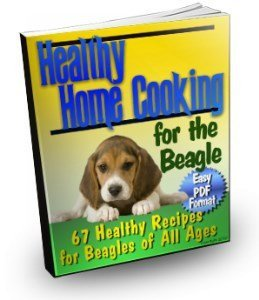 Beagle home cooking book