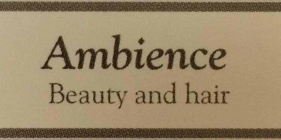 Ambience Beauty & Hair Ltd company logo