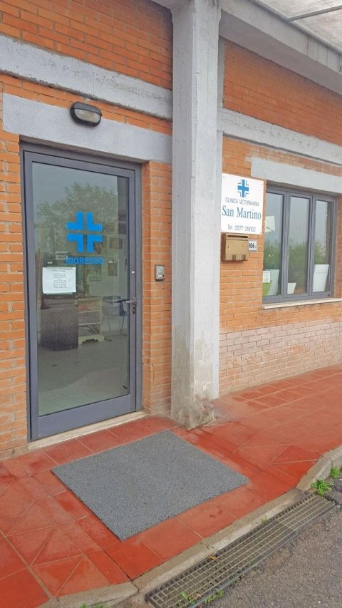 esterno clinica veterinaria