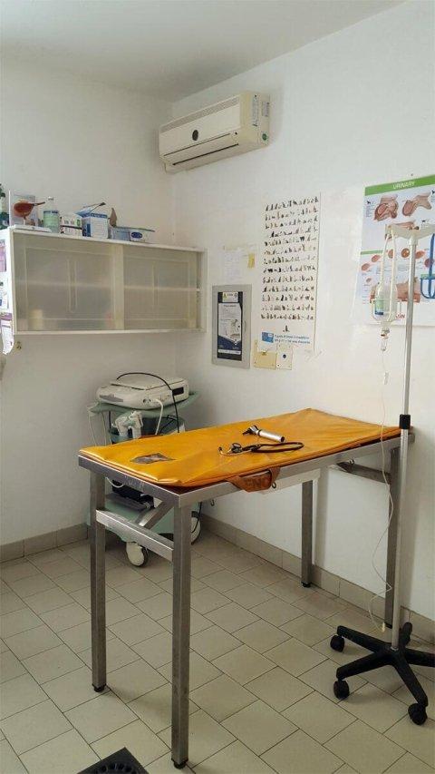 stanza per visita in una clinica veterinaria