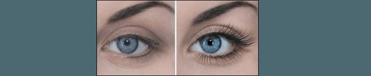 eyelashes pure beauty