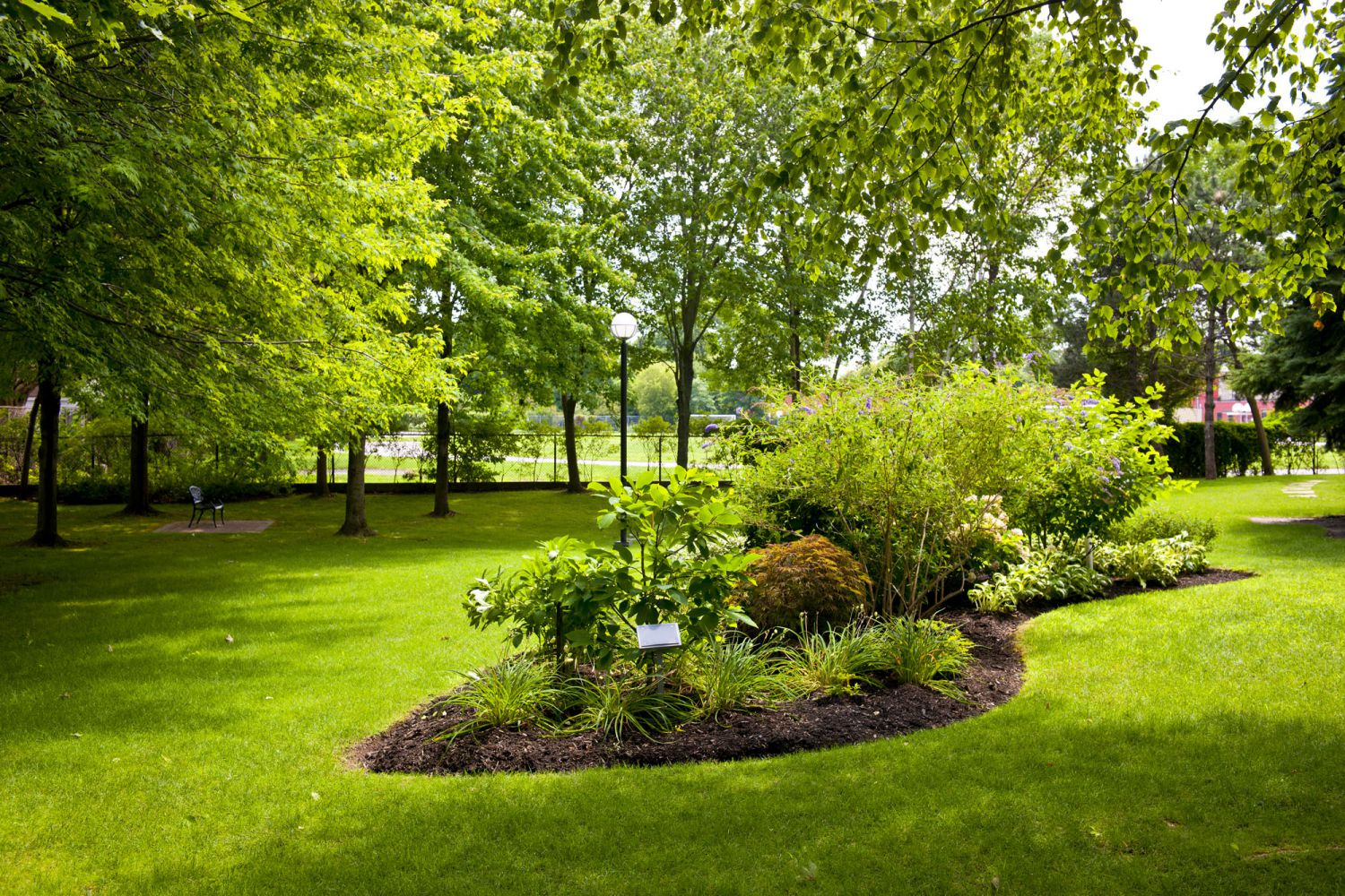 Landscaping can do wonders for your yard in Enterprise, AL