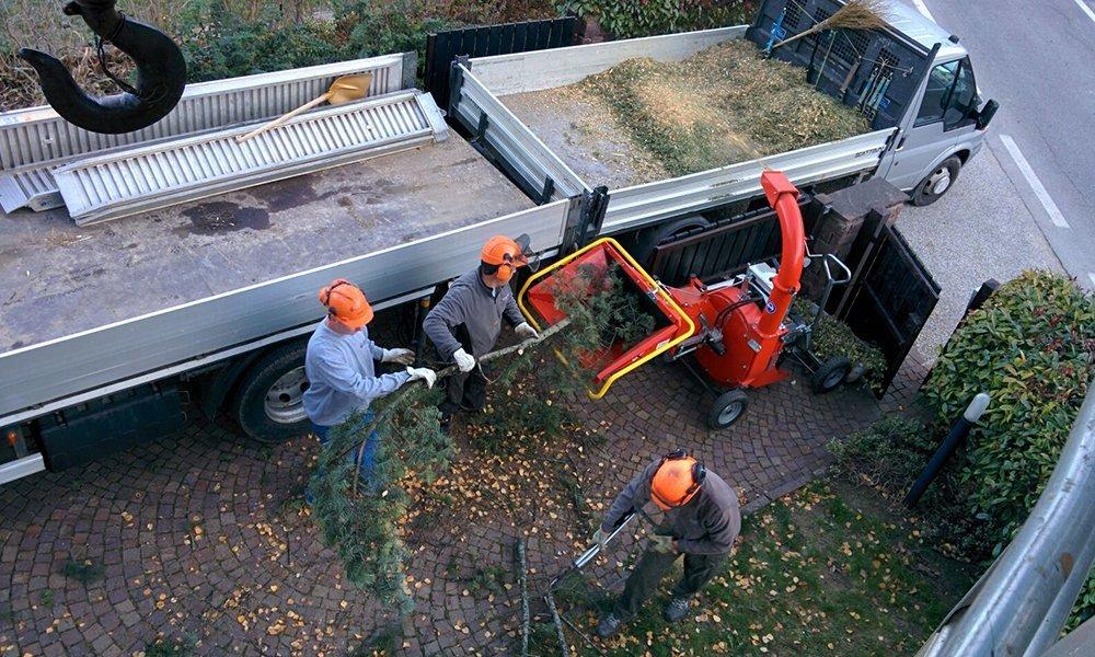 Due camion e dei giardinieri al lavoro con degli alimenti arancioni e delle cuffie