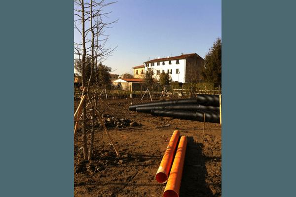 piante per parchi privati