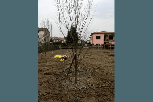 lavori per giardini parchi privati