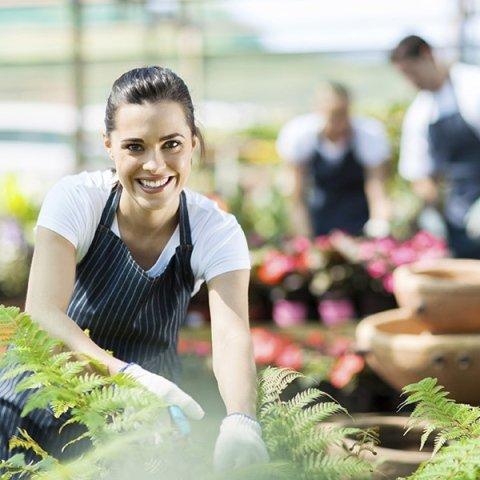 manutenzione giardini pensili