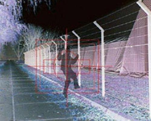 Sistema antintrusione recinzione
