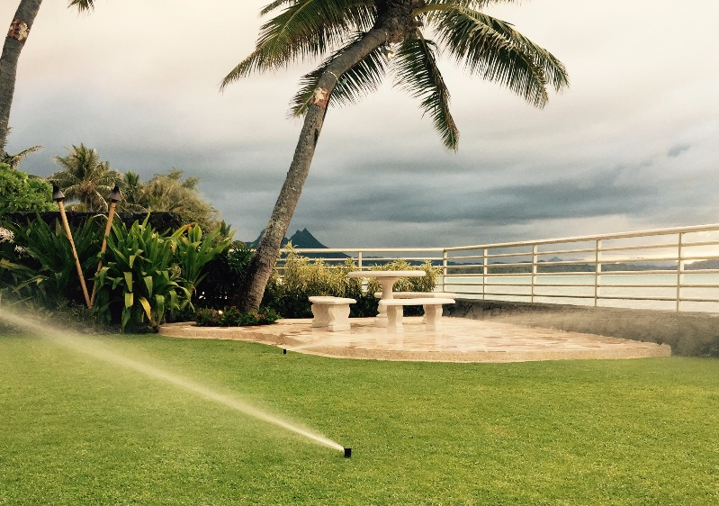 Irrigation of crops with sprinkler systems spraying water in Kailua, HI