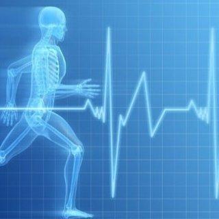 certificati per attività fisica