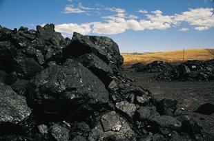 Coal supplier