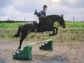 Equestrian services - Hyndburn, Accrington, Lancashire - Horse riding clubs - Accrington riding centre