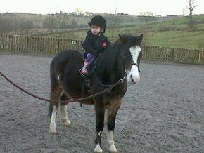 Horse riding school - Hyndburn, Accrington, Lancashire - Children's horse riding - Accrington Riding Centre