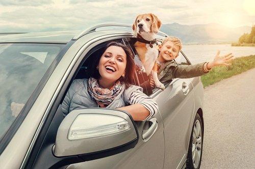 famiglia con cane in macchina