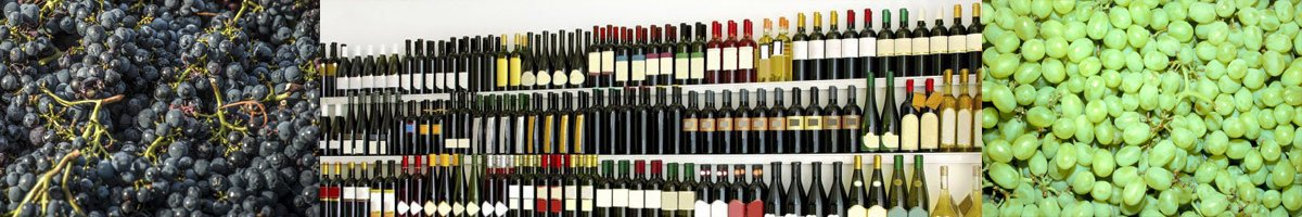 sample wine and platters wine sales banner