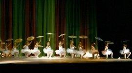 Sarzana - Centro Studio Danza, professionisti, insegamento, disciplina
