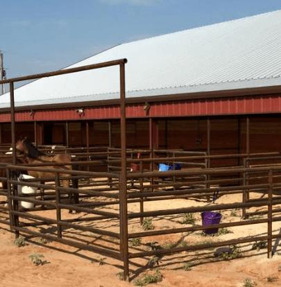Horse Barn in Burleson, TX