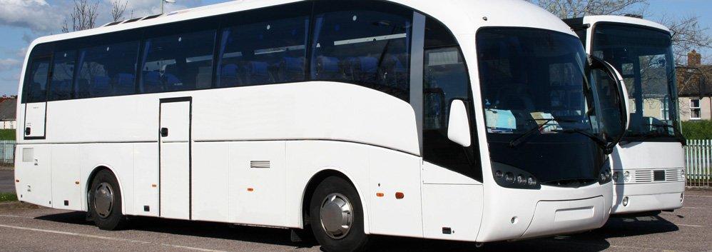 white luxury bus