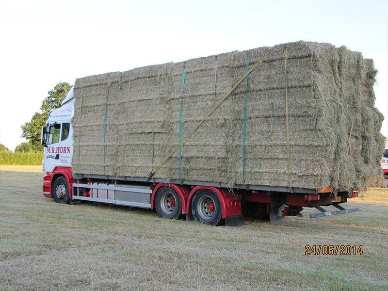 rear view of the lorry