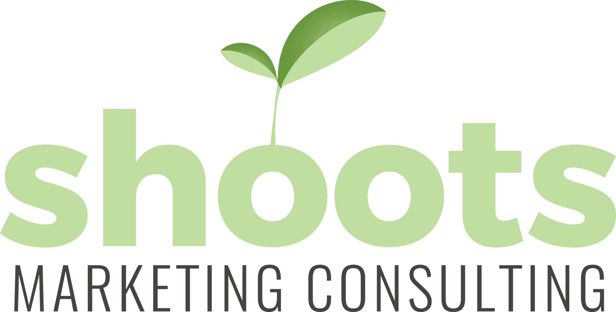 Shoots Marketing Consulting