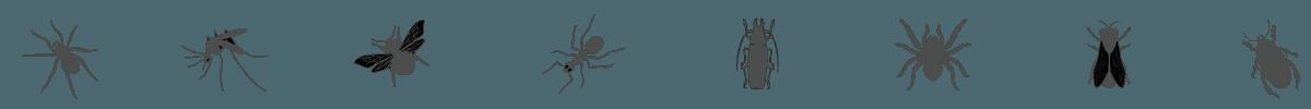 kellys-pest-management-bugs2