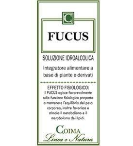 Fucus