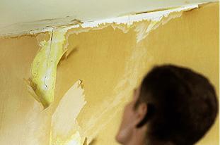 Painters and decorators - Swansea - Andrew Evans Painting Contractors Ltd  - Water Damage