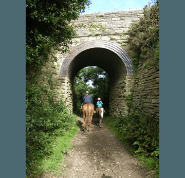 Horse Riding Classes - Perranporth - Goonbell Riding Centre - Ridge