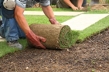 turfing solutions