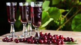 degustazione liquori aromatizzati