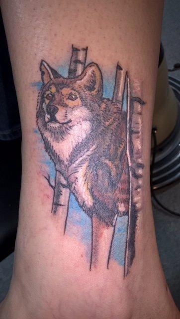 Tattoo shop buffalo ny tattoo studio professional for Tattoo buffalo ny